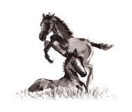 Foal oriental ink painting, sumi-e Royalty Free Stock Photo