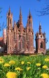Foalfoot contre l'église de St Anna à Vilnius, Lithuanie Image libre de droits