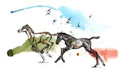 Foals vector illustration