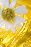Foam for a bath with camomile Stock Photography