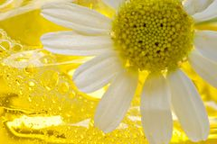 Foam for a bath with camomile Royalty Free Stock Photo