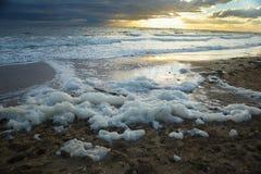 Foam in beach Royalty Free Stock Photo