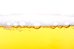 Foam on beer. Stock Photos