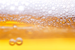 Foam on beer. Foam on a light beer Royalty Free Stock Images