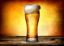 Foam on beer. In glass on a wooden table Royalty Free Stock Image