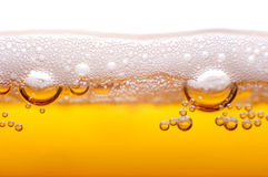 Foam and bubbles of beer.