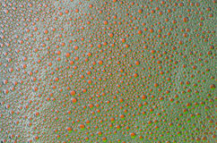 The foam bubbles on the red and green texture background Royalty Free Stock Photo