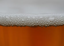 Foam on cider. Cider in glass stock photos