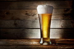 Foam glass of lager beer Stock Photos