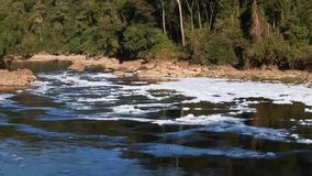 Foam of pollution on Tiete River stock video