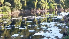 Foam of pollution on Tiete River stock footage