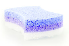 Foam rubber sponge Royalty Free Stock Photo