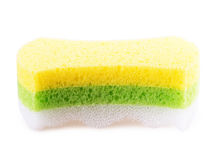 Foam rubber sponge Stock Image