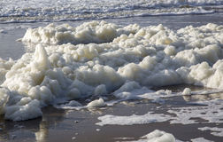The foam of the sea. The white foam of the sea on the sandy shore royalty free stock images