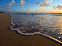 Foam wave. Porto de Galinhas - Recife - Brasil Royalty Free Stock Photography