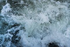 Foaming water in a rushing river royalty free stock photography