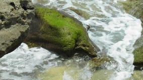 Foaming water. Sea foam on mossy rocks stock images