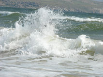 Foaming wave Stock Images