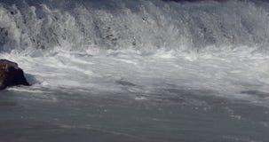 Foamy άγριος ποταμός απόθεμα βίντεο