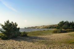foamy ακροθαλασσιά Στοκ φωτογραφίες με δικαίωμα ελεύθερης χρήσης