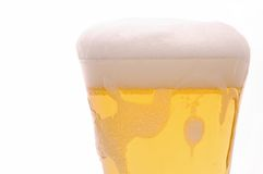 Foamy Beer Royalty Free Stock Image