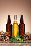 Foamy beer and brewing ingredients Royalty Free Stock Photography