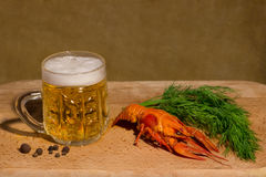 Foamy beer with crayfish with dill and pepper Royalty Free Stock Images