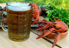 Foamy beer in a glass and boiled crawfish closeup, grilled meat on skewers in the background. Stock Photography