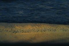 Foamy fala i mokry piasek w zmierzchu Zdjęcia Royalty Free