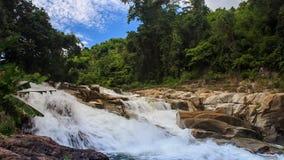 Foamy mountain stream against tropical plants blue sky. View of foamy mountain stream among stones against tropical plants and blue sky stock footage