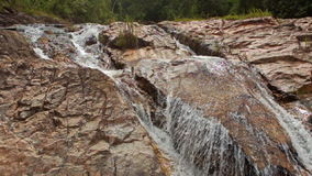 Foamy Mountain Stream Cascade Washes Brown Rocks. Closeup transparent rapid foamy mountain stream cascade washes brown rocks against tropical plants on hills stock video footage