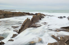 Foamy rocks in Brittany Royalty Free Stock Images