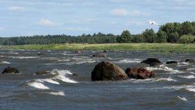 Foamy sea. Beautiful seascape; island of Hiiumaa, Estonia Royalty Free Stock Photos