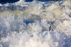 Foamy seething wave Royalty Free Stock Image