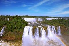 Foamy streams fall between the jungle. Roaring falls in South America - Iguazu. Foamy streams fall between the green jungle. The magnificent rainbow is shone in Stock Photo