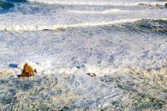 foamy waves Royaltyfri Foto
