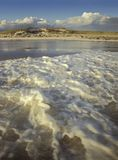 Foamy waves at the beach. Foamy waves at the beach late in teh afternoon Royalty Free Stock Photo