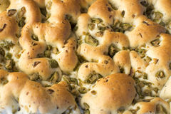 Focaccia With Olives - Loaf Royalty Free Stock Photo