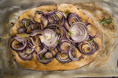 Focaccia with red onion Stock Image