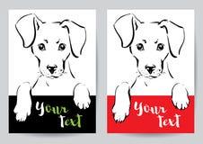 Focinho e patas de um cão Imagem de Stock