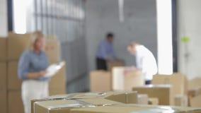 Foco bajo de los trabajadores que toman las cajas de la correa metrajes