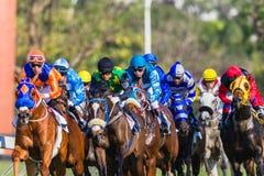 Foco de la acción del primer de los jinetes de la carrera de caballos Fotografía de archivo