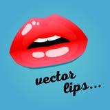 Foco de los cosméticos y de Makeup Labios hermosos del primer de la mujer con el lápiz labial rojo y el lustre Fotografía de archivo