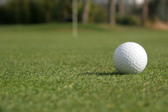 Foco del golf Fotografía de archivo