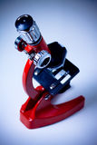 Foco do microscópio Imagens de Stock Royalty Free