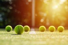 Foco macio da bola de tênis na corte de grama do tênis com luz solar Fotografia de Stock Royalty Free
