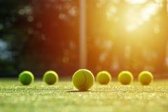 Foco macio da bola de tênis na corte de grama do tênis com luz solar Fotos de Stock