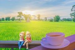 Foco macio da silhueta abstrata do por do sol com xícara de café, o menino e a zorra no assento de madeira, arroz 'paddy' dos des Fotos de Stock Royalty Free