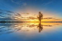 Foco macio a paisagem colorida com fundo do por do sol Fotos de Stock