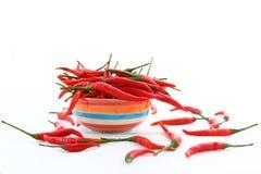 Foco selectivo en la paprika roja en fondo seramic del blanco del cuenco Fotografía de archivo libre de regalías